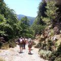 Agia Irini Gorge Tour
