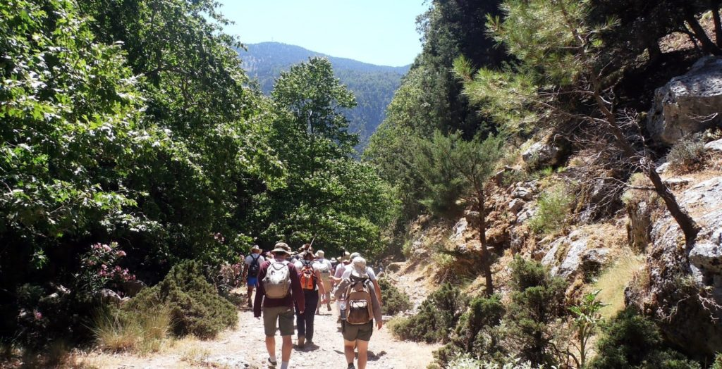 Group of Walkers in Agia Irini Gorge