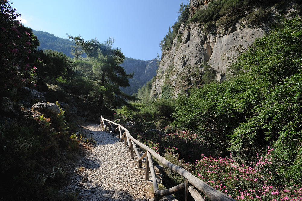 Path of Agia Irini Gorge