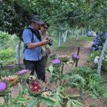 Crete Botanical Park Tour
